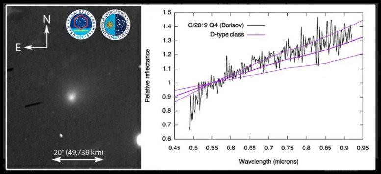 Besucher aus anderem Sonnensystem - interstellaren Kometen
