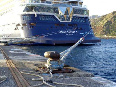 Kreuzfahrtschiff - Virus-Notstand