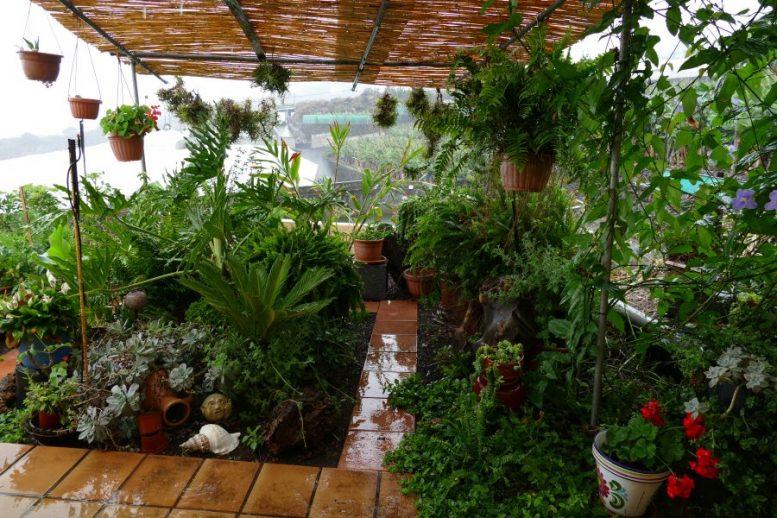 Garten - Platzregen