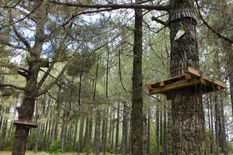 Kletterpark - Abenteuerpark
