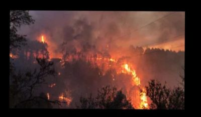 Waldbrand - Feuernacht